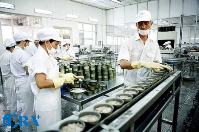 Dịch tài liệu quy trình chế biến thực phẩm